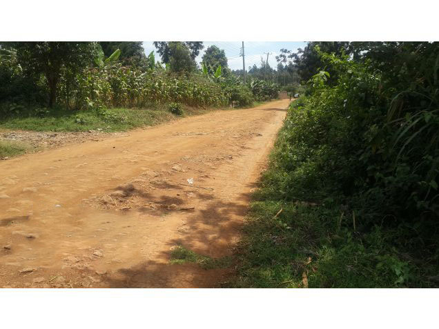 1/4 Acre for sale in Ruaka