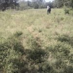 0.5 Acres  For Sale In Thome