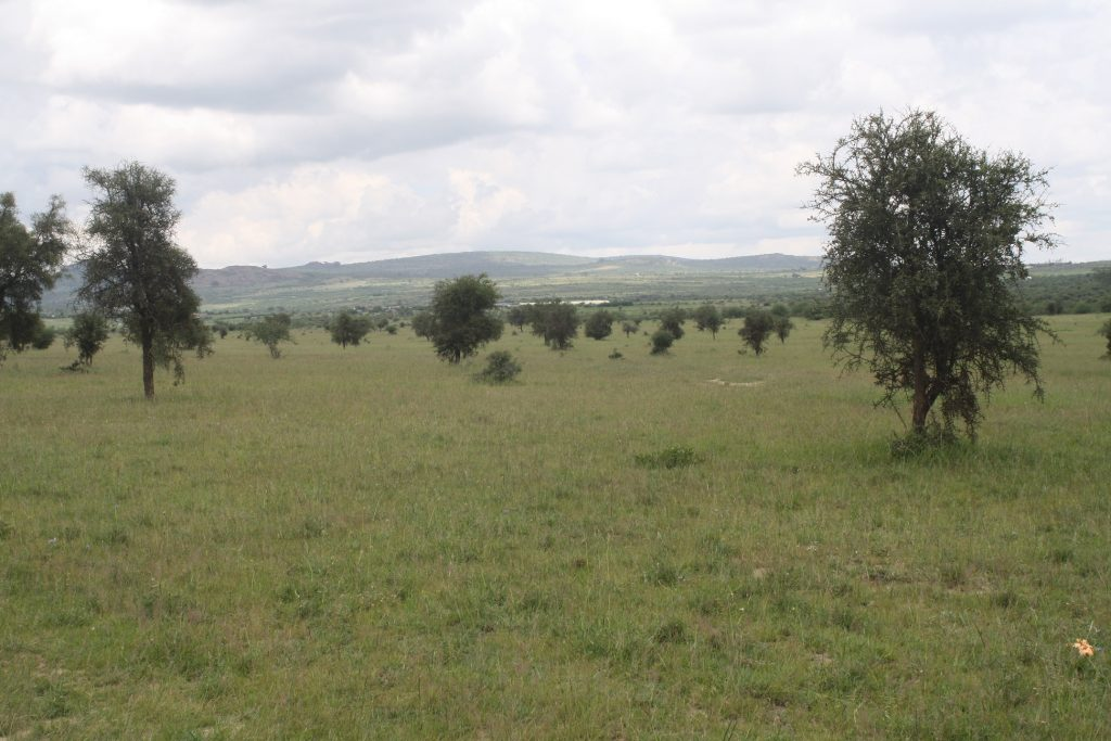 1 Acre Touching Dagoretti Road